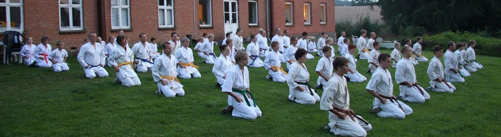 Farum Kyokushin Karate