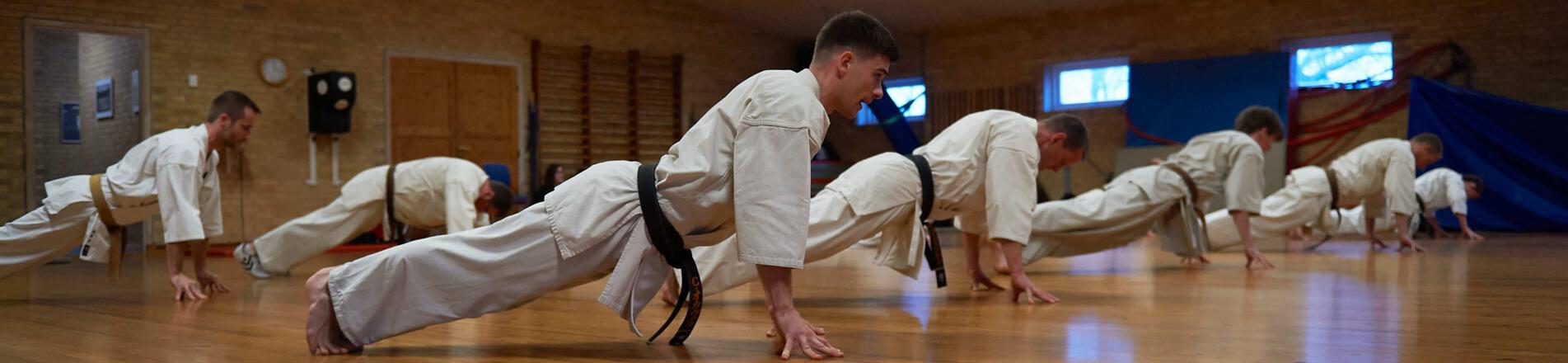 Farum Kyokushin Karate - Forsidebillede